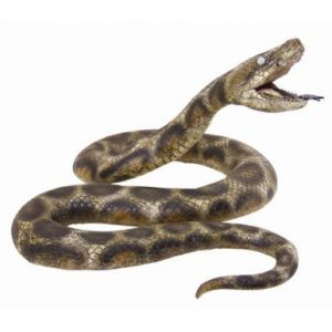 Serpiente jumbo 180 cm