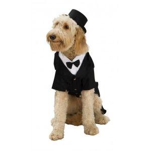 Disfraz esmoquin para perro