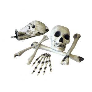 Set huesos 6 piezas