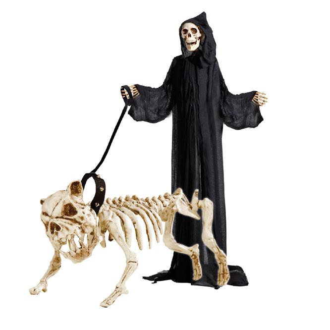 perro-esqueleto-correa-2-142500