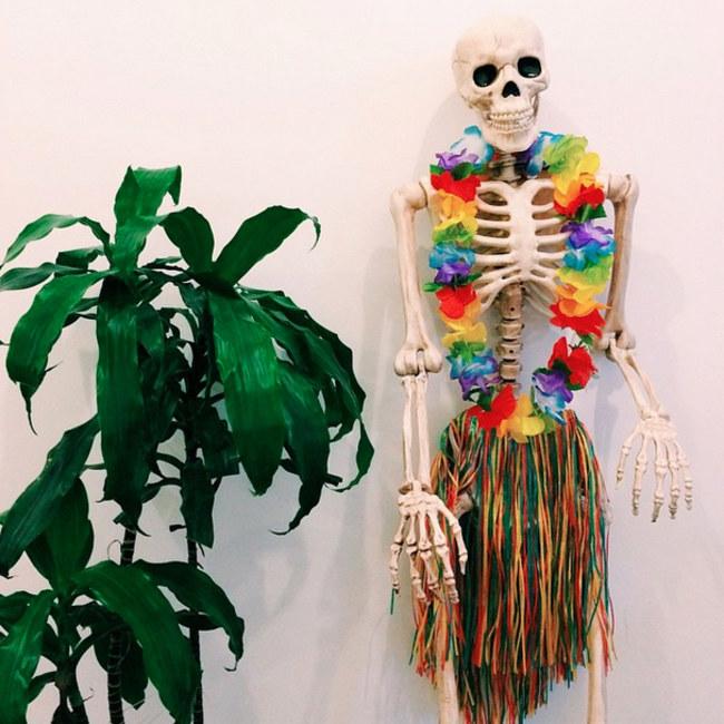 skellie-de-fiesta-hawaiana-586048_w650