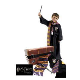 Cofre disfraz harry potter