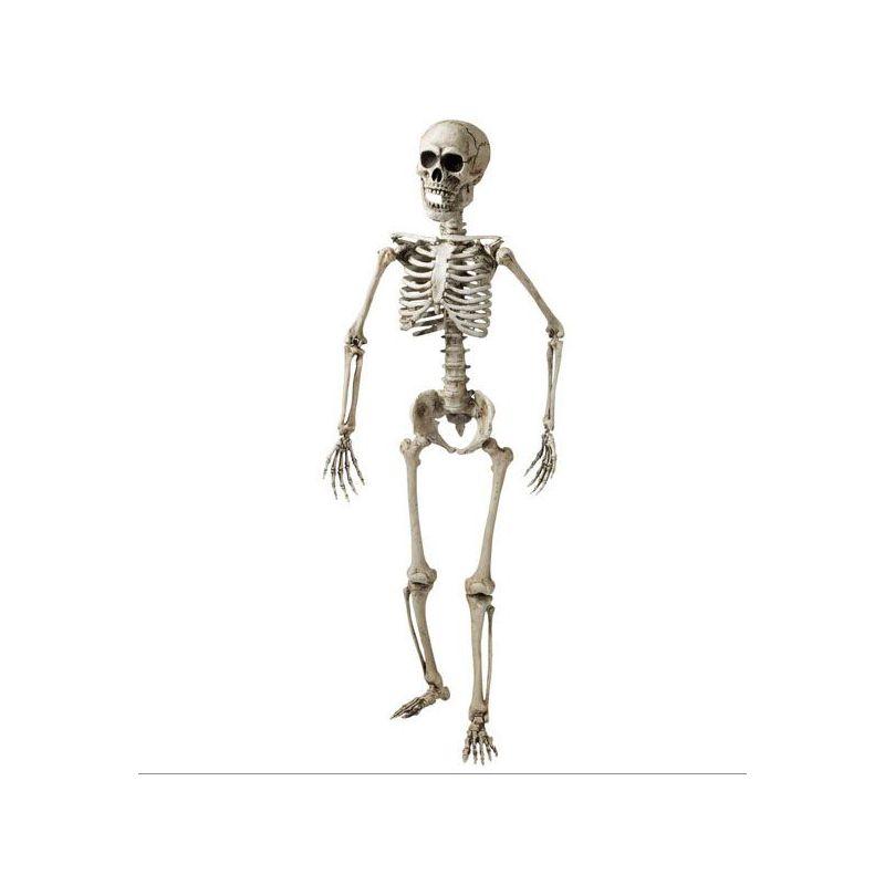 Esqueletos y calaveras para decoracion fiesta halloween. Comprar ...