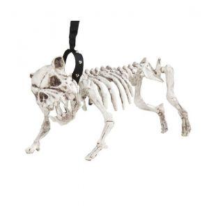 Perro esqueleto con correa