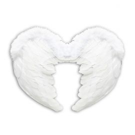 Alas angel pequeñas 37x50cm