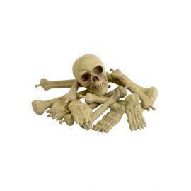 Bolsas huesos y craneo