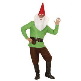 Disfraz gnomo verde