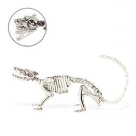 Raton esqueletico 38cm