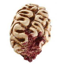 Cerebro 16cm
