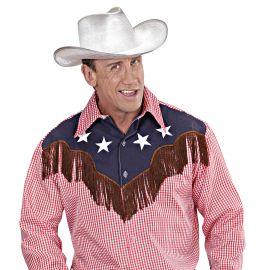 Sombrero vaquero plateado