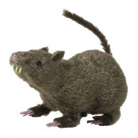 Rata peluda 21 cm