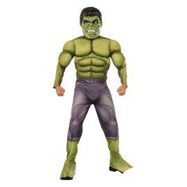Disfraz hulk premium
