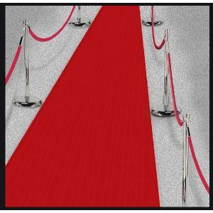 Alfombra roja hollywood 4,5m