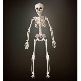 Esqueleto 40cm