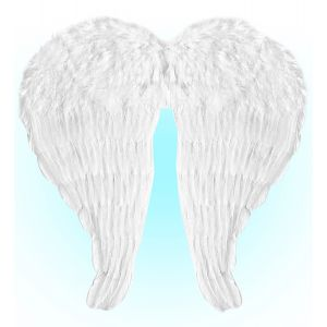 Maxi alas plumas blancas 67x64
