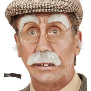Set viejo bigote y cejas