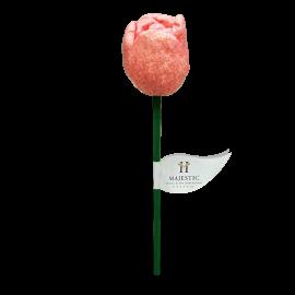 Rosa golosina