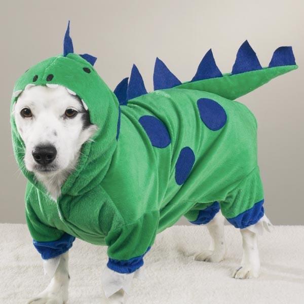 http://www.barullo.com/blog-disfraces/wp-content/uploads/2013/01/disfraz-para-perro-dragon.jpg