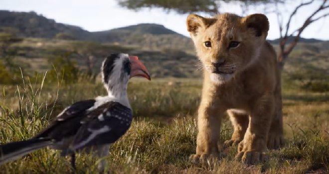 rey leon 3